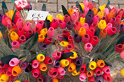 Wooden tulips make an easy-to-transport, long-lasting souvenir.  Flowers in many  forms, but primarily tulips, are a colorful hallmark of Amsterdam.