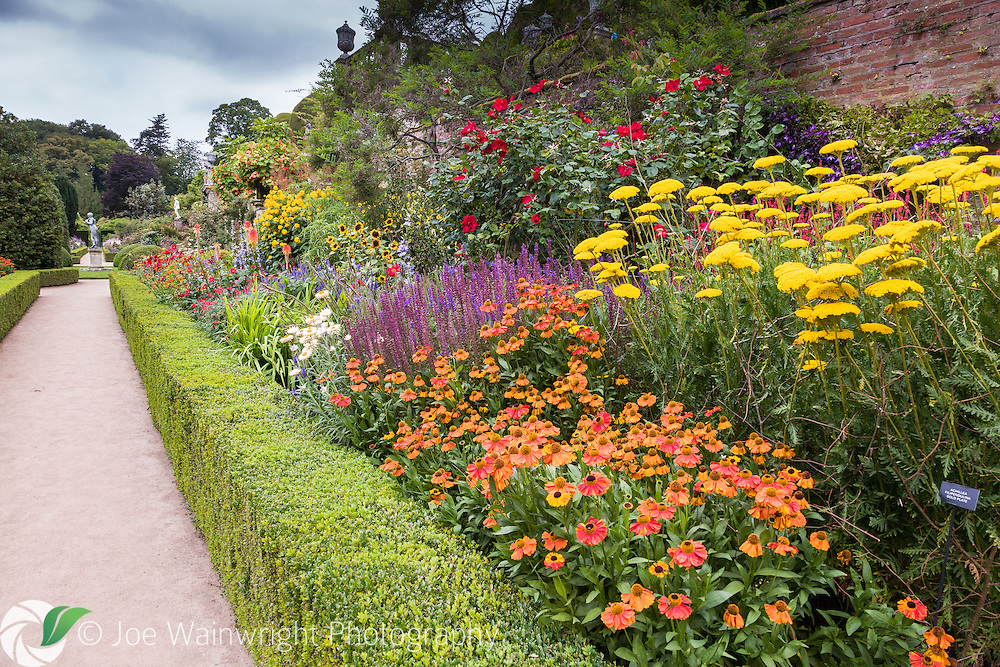 A rich display of herbaceous perennials, roses and other shrubs at Powis Castle, Welshpool, photographed in August.