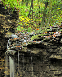Rather than present Pennsylvania as wilderness that no longer exists, this book shows - through photography and experiential text, the magnificent beauty and weather that still abounds in our backyard. Western Pennsylvania's immense geographic size is rich with wild nature, scenery and space. Between Lake Erie and the Maryland border, and between central Pennsylvania to the Ohio/West Virginia borders, there are several climate zones and landscapes - offering a wide swath of outdoor activity to birdwatchers, hikers, kayakers, mountain bikers, photographers and astronomers during all four seasons.