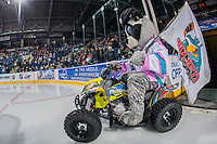 KELOWNA, CANADA - JANUARY 27: Rocky Racoon, the mascot of the Kelowna Rockets rides on his quad as he enters the ice against the Kamloops Blazers on January 27, 2017 at Prospera Place in Kelowna, British Columbia, Canada.  (Photo by Marissa Baecker/Shoot the Breeze)  *** Local Caption ***