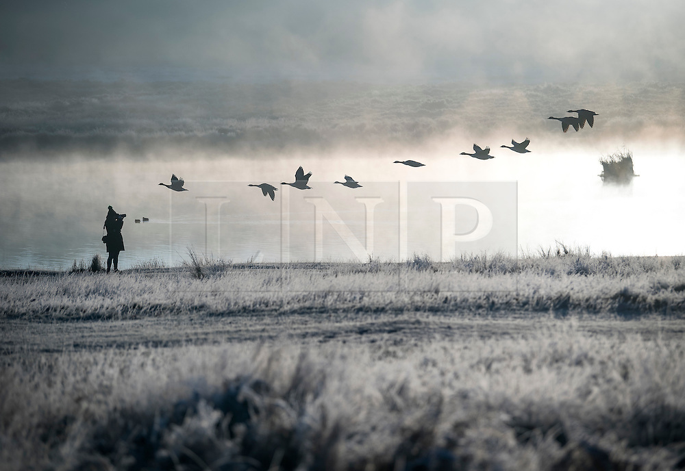 © Licensed to London News Pictures. 29/11/2016. London, UK. A photographer takes a picture of geese flying through a mist and frost covered landscape in Richmond Park, London as temperatures in the UK plummet. Sub zero temperatures are due to spread to the south east this week as winter starts to set in. Photo credit: Ben Cawthra/LNP