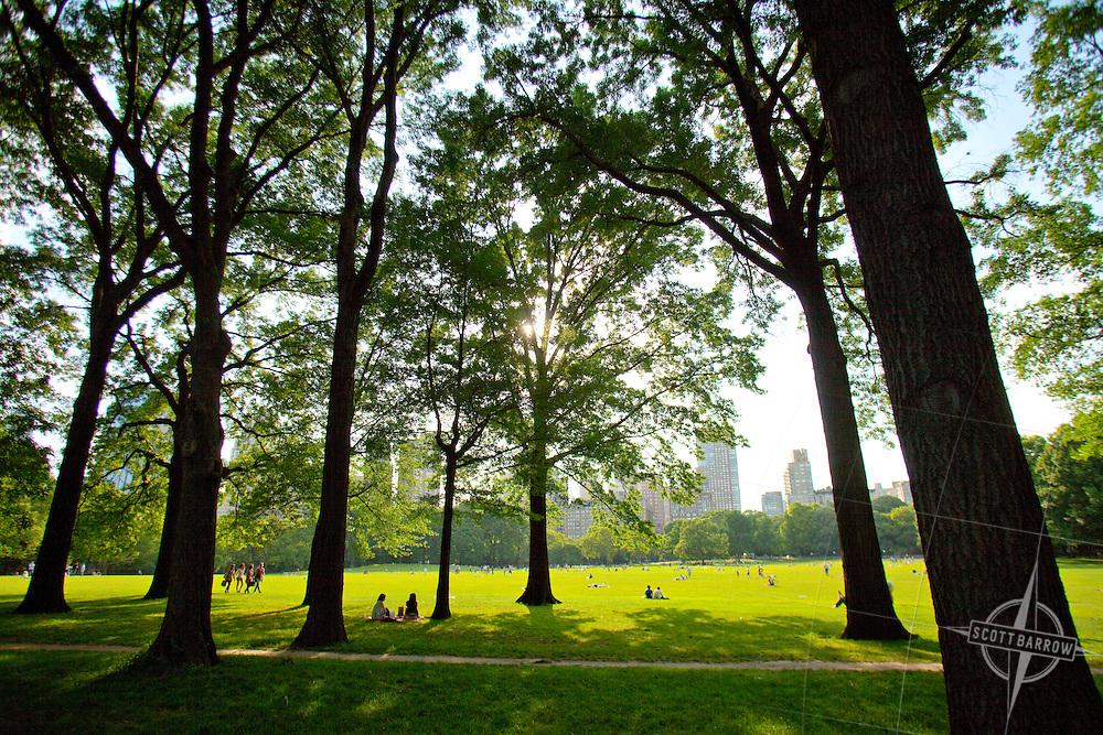 The Sheep's Meadow in Central Park.  New York City.