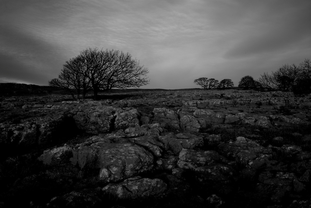 Limestone Pavement at Hutton Roof, Cumbria