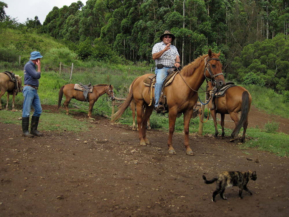 Big Island Adventures, Kona, Hilo, Volcanoes National Park, Snorkel, Cooks Inlet, Big Island, Hawaii, Tropical Fish, Horseback Riding, Waipio Valley, night dive, Manta Rays