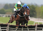 Punchestown Festival 020514
