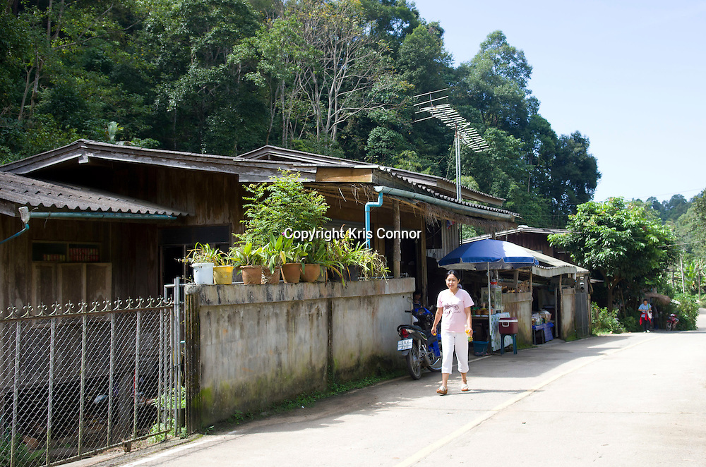 A woman walks along a road in a small village in Chiang Mai Providence, Thailand. Photo by Kris Connor