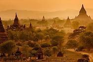 A warm landscape of Bagan temples, Myanmar