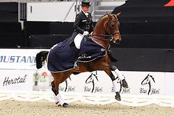 Werth Isabell (GER) - Don Johnson 14<br /> JBK Horse Show Odense 2010<br /> © Hippo Foto - Leanjo de Koster