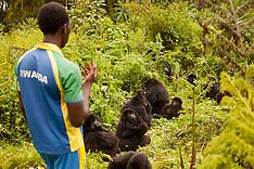 JAN 22 2014 Rwanda Cricket Stadium Foundation-Calendar