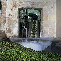 Pressing olives in Ramallah - Rich Wiles