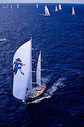 Blue Too sailing in the 2011 St. Barths Bucket Regatta Race 3.