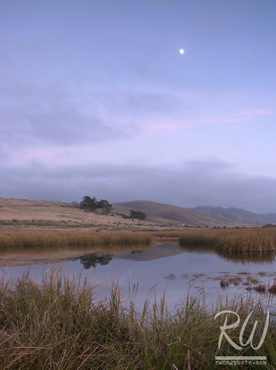 Moon Over Tidal Marsh, Point Reyes National Seashore, California