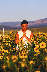 man in a field of sunflowers praying