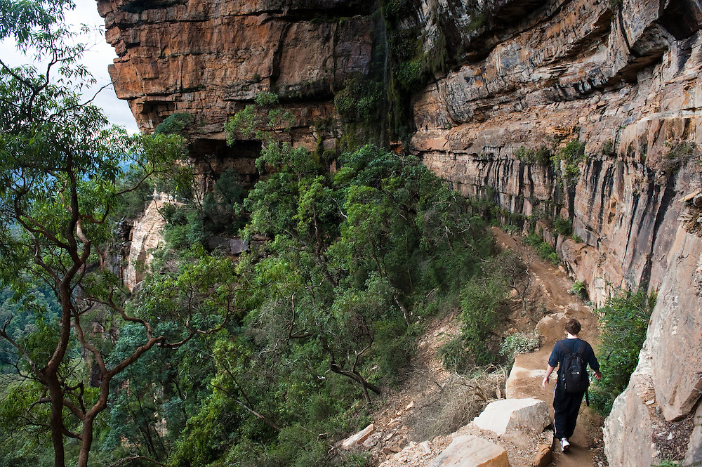 The Blue Mountains National Park, New South Wales, Australia. Wentworth Falls walk.