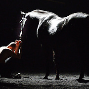 13.03.2016 Bartabas and  Marin with 4 horses and a donkey present GOLGOTA at Sadlers Wells  London UK.<br /> Equestrian theatre artist BARTABAS (famous for his use of horses as artistic expression) and Contemporary Flamenco dancer Andres Marin unite equestrian theatre with art, music &amp; dance onstage.