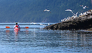Orcas Island - Kayaking trip