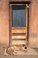 Guard Dog Sleeping at the Front Door. Taos Pueblo, New Mexico. Image taken with a Nikon D800 an 35 mm f/1.4G lens (ISO 100, 35 mm, f/8, 1/640 sec).