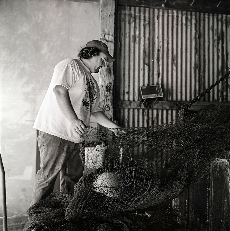 CA &quot;Rocky&quot; Magwood IV, a third generation South Carloina shrimp fisherman, dips a newly made net into a finishing solution. <br />