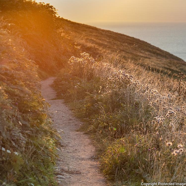 Last light, coast path, Baggy Point, Devon,