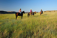 Cowboy and Cowgirls on horseback,Wilson Ranch, Guest Ranch and B&B,Fossil, Oregon, USA<br /> Model release 0237,0115,0234