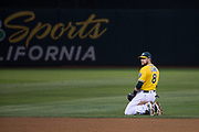 Oakland Athletics second baseman Jed Lowrie (8) dives for a Los Angeles Angels ground ball at Oakland Coliseum in Oakland, California, on September 5, 2017. (Stan Olszewski/Special to S.F. Examiner)