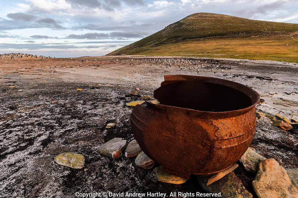 An old penguin rendering pot, Saunders Island, Falkland Islands, South Atlantic Ocean