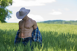 muscular cowboy removing his shirt in a field of tall grass