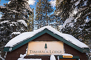 Tamarack Lodge cross-country ski hut, Inyo National Forest, California USA