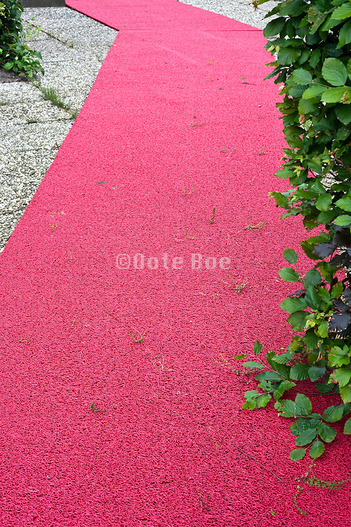 old plastic red carpet with grass growing between it
