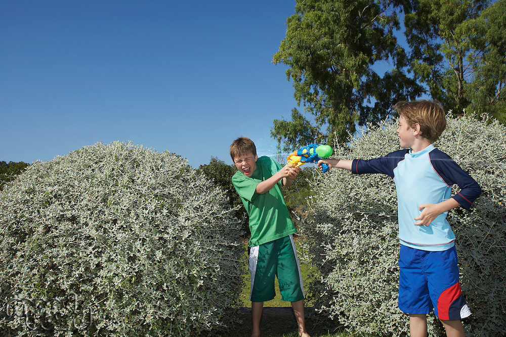Two boys (6-11) playing with water pistols among bushes laughing