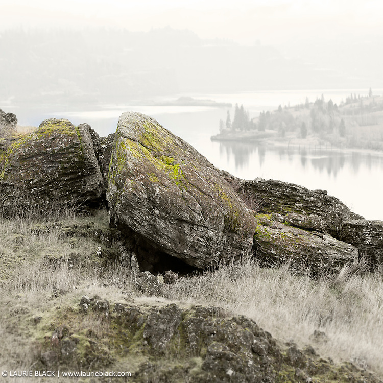Meadow boulders overlooing river
