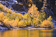 A lone fisherman amid fall aspens and early snow on the shore of Convict Lake, Sierra National Forest, Sierra Nevada Mountains, California