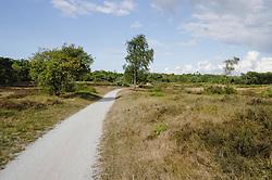 Huizen, Nieuw Bussummerheide, Noord Holland, Netherlands