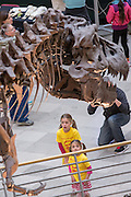 Children view Sue the T-Rex exhibit in the Main Hall of the Field Museum of Natural History in Chicago USA