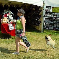 Cornbury Festival 2013 featuring Staxs