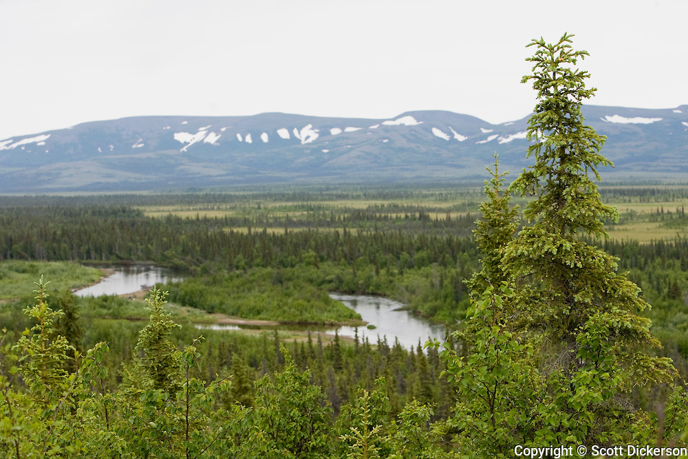 Landscape surrounding the Koktuli River, Bristol Bay, Alaska.