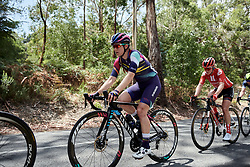 Alexis Ryan (USA) on the Stirling climb on Stage 3 of 2020 Santos Women's Tour Down Under, a 109.1 km road race from Nairne to Stirling, Australia on January 18, 2020. Photo by Sean Robinson/velofocus.com