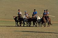 Mongolia. Polo game. - sport born in Mongolia- Orkhon valley  Karakorum   Mongolia