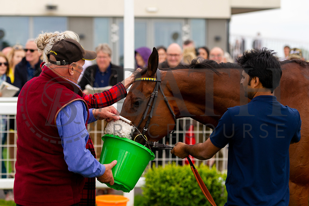 Pocket Warrior ridden by Tom Marquand and trained by Paul D'Arcy in the Mj Church Plant And Transport Handicap race.  - Ryan Hiscott/JMP - 24/05/2019 - PR - Bath Racecourse - Bath, England - Friday 24th May 2019 Race Meeting at Bath Racecourse