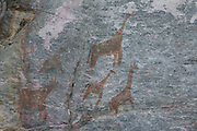 Rock paintings, Tsodilo Hills, Botswana, Southern Africa, Africa.© Z&D Lightfoot.www.Lightfootphoto.com