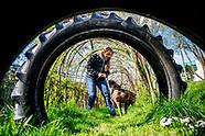 dieren serie honden training