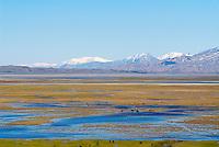 Turquie. Anatolie de l'Est. Paysage vers le Mont Ararat. // Turkey. East Anatolia Province. Landscape aroud Ararat mountain.