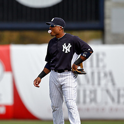 March 2, 2011; Tampa, FL, USA; New York Yankees second baseman Robinson Cano (24) during a spring training exhibition game against the New York Yankees at George M. Steinbrenner Field.  Mandatory Credit: Derick E. Hingle