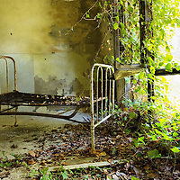 VENICE, ITALY - AUGUST 27: A bed lies in one of the dormitories covered with overgrown ivy in the psychiatric ward of the abandoned Hospital of Poveglia on August 27, 2011 in Venice, Italy. The island of Poveglia, with its ruined hospital and plague burial grounds, is said to be the most haunted location in the world. Though it is a multi-million dollar piece of real estate it lies deserted and off limits to the public. Its dark, forbidding shores are only minutes away from the glamour of the Venice Film Festival on the Lido....To discuss licensing our 4000 word photo documentary of the island, email robin@robinsaikia.com. ..British author Robin Saikia visited the site with Italian photographer Marco Secchi. Marco captured the sinister atmosphere of the island. Robin describes the terrifying apparitions and the stories behind them.