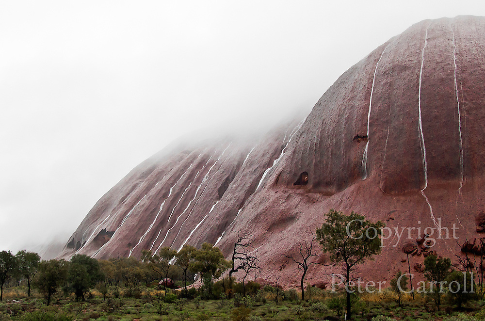 Heavy cloud rests on Uluru as streams of water pour down the flanks of the red rock.<br /> Uluru rises from spinifex and Mulga desert plains about 450km south west of Alice Springs