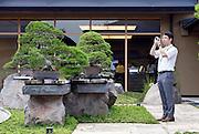 A visitor takes photos of bonsai trees on display at the Saitama Omiya Bonsai Museum of Art in Saitama, Japan on 15 Aug. 2011..Photographer: Robert Gilhooly