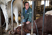 Joan Wortman feels the cool skin of her cow Issue after taking her temperature in South Randolph, Vt. Wedensday, March 30, 2016. Issue was ill with an infection in a large hard lump on her side, but recovered fully after the infected area was incised and drained. (Valley News - James M. Patterson) Copyright Valley News. May not be reprinted or used online without permission. Send requests to permission@vnews.com.