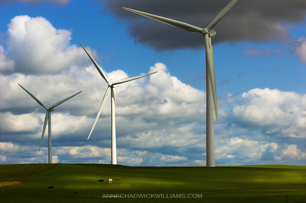 Enxco's new wind turbine project in Suisun City is creating green jobs in California.