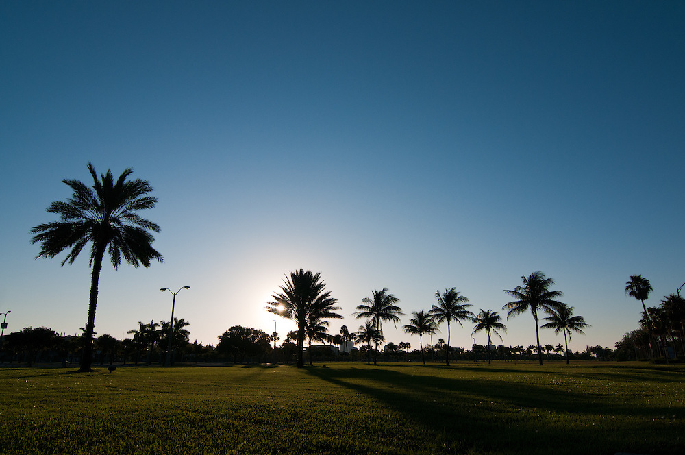 North Miami morning
