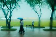 05 MAY 2013 - BANGKOK, THAILAND:  People under an umbrella walk across Sanam Luang (the royal parade ground) during an unseasonal thunderstorm near the Grand Palace in Bangkok, Thailand. The rainy season in Bangkok is usually mid June through early November, but 2013 has seen unseasonal rains through what is normally Bangkok's dry season.       PHOTO BY JACK KURTZ